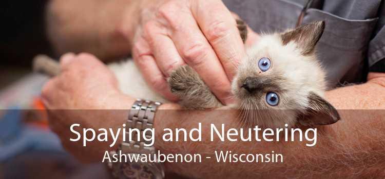 Spaying and Neutering Ashwaubenon - Wisconsin