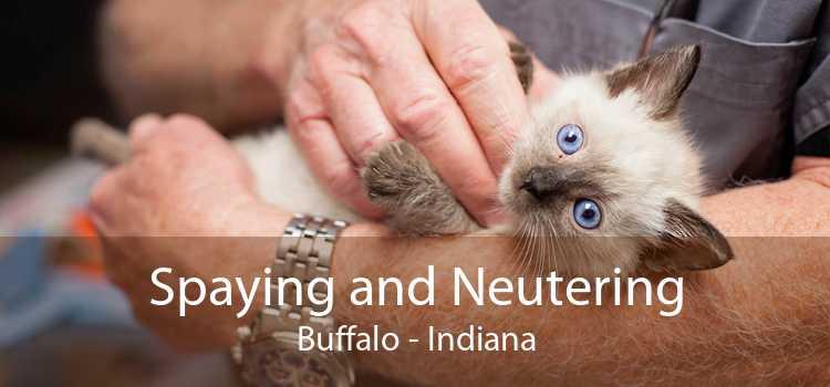 Spaying and Neutering Buffalo - Indiana