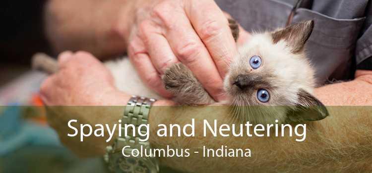 Spaying and Neutering Columbus - Indiana