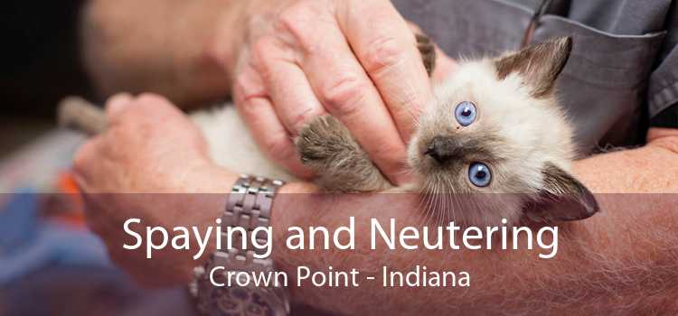 Spaying and Neutering Crown Point - Indiana