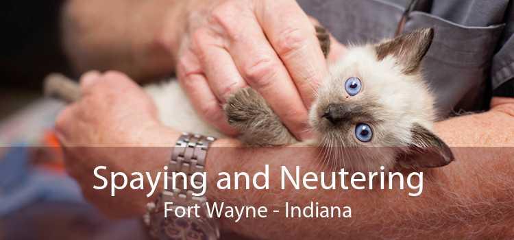 Spaying and Neutering Fort Wayne - Indiana