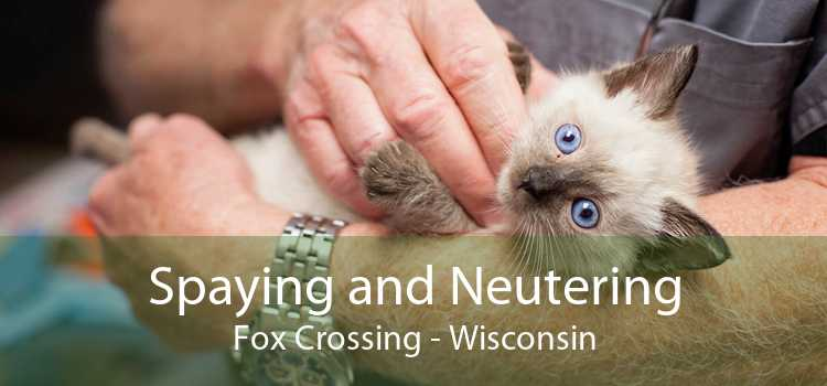 Spaying and Neutering Fox Crossing - Wisconsin