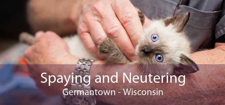 Spaying and Neutering Germantown - Wisconsin