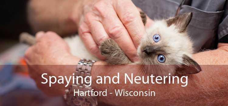 Spaying and Neutering Hartford - Wisconsin