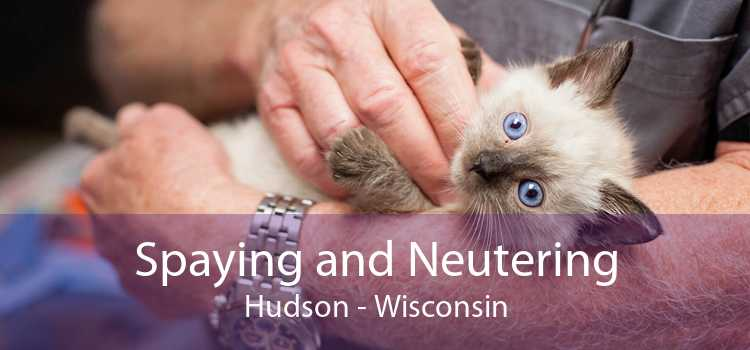 Spaying and Neutering Hudson - Wisconsin