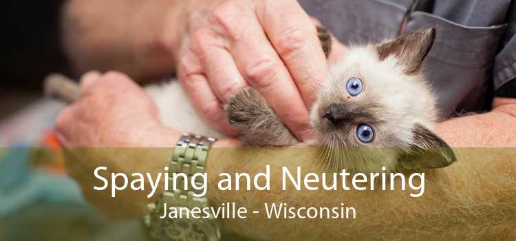 Spaying and Neutering Janesville - Wisconsin