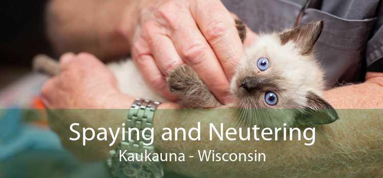 Spaying and Neutering Kaukauna - Wisconsin