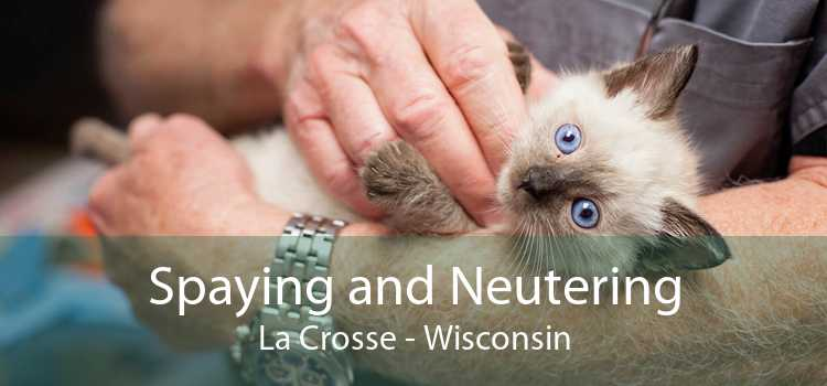 Spaying and Neutering La Crosse - Wisconsin