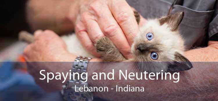 Spaying and Neutering Lebanon - Indiana
