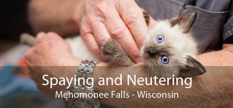 Spaying and Neutering Menomonee Falls - Wisconsin