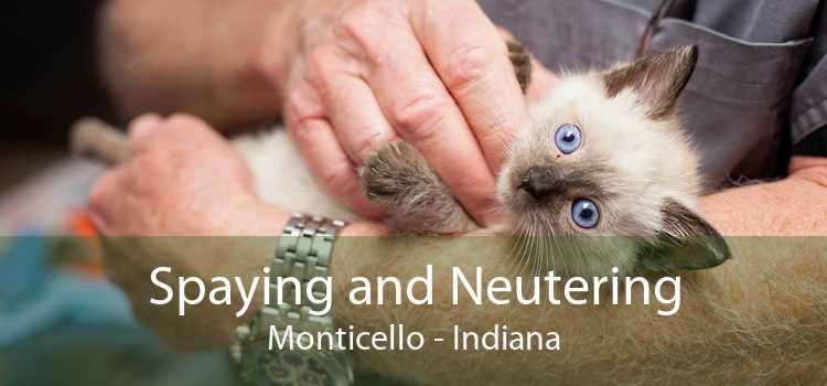 Spaying and Neutering Monticello - Indiana