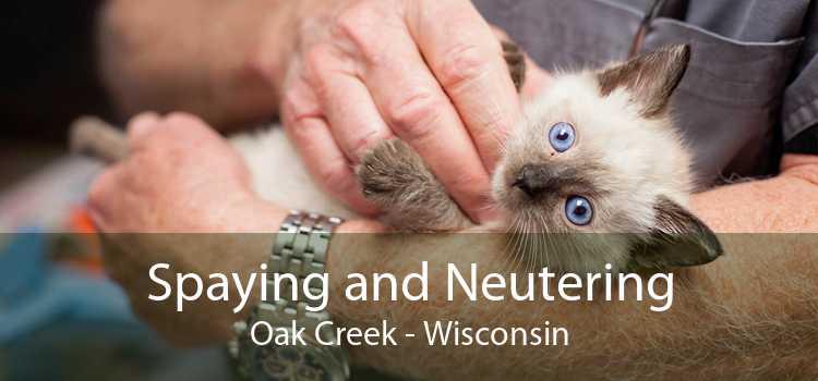 Spaying and Neutering Oak Creek - Wisconsin
