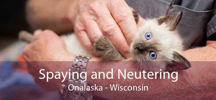 Spaying and Neutering Onalaska - Wisconsin