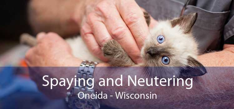 Spaying and Neutering Oneida - Wisconsin