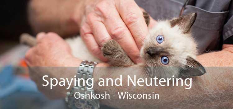 Spaying and Neutering Oshkosh - Wisconsin