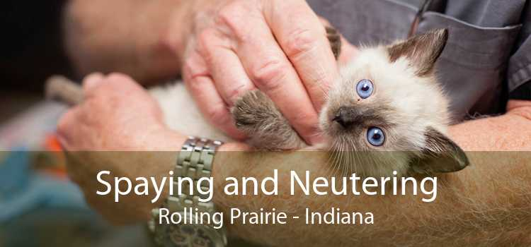 Spaying and Neutering Rolling Prairie - Indiana