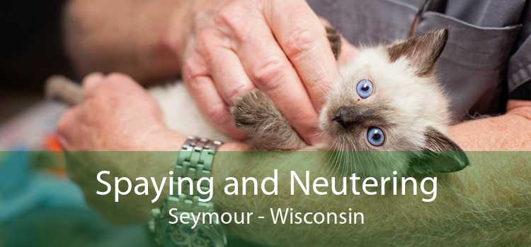 Spaying and Neutering Seymour - Wisconsin