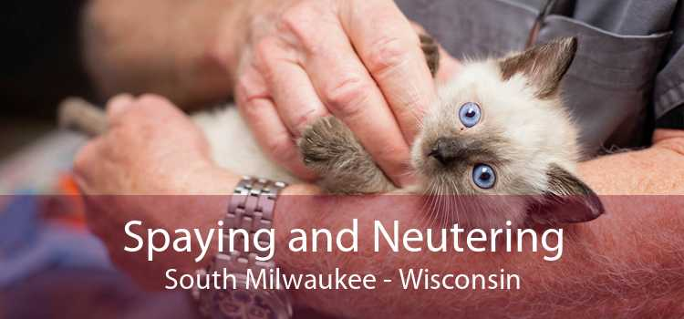 Spaying and Neutering South Milwaukee - Wisconsin