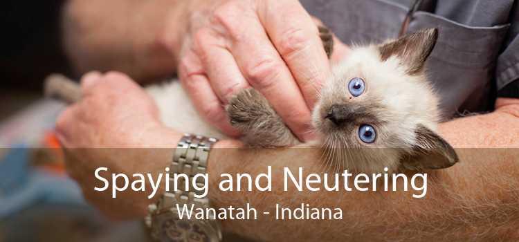 Spaying and Neutering Wanatah - Indiana