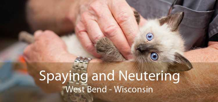 Spaying and Neutering West Bend - Wisconsin
