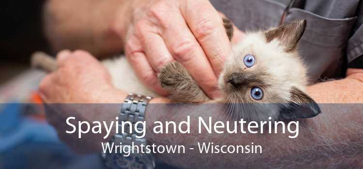 Spaying and Neutering Wrightstown - Wisconsin