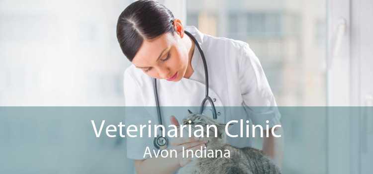 Veterinarian Clinic Avon Indiana