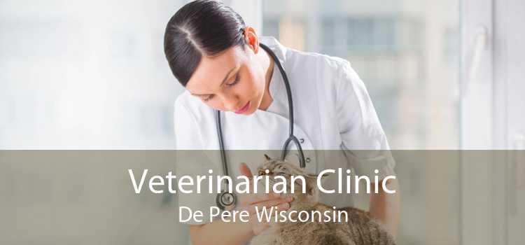 Veterinarian Clinic De Pere Wisconsin