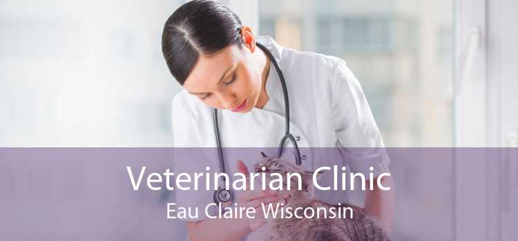 Veterinarian Clinic Eau Claire Wisconsin