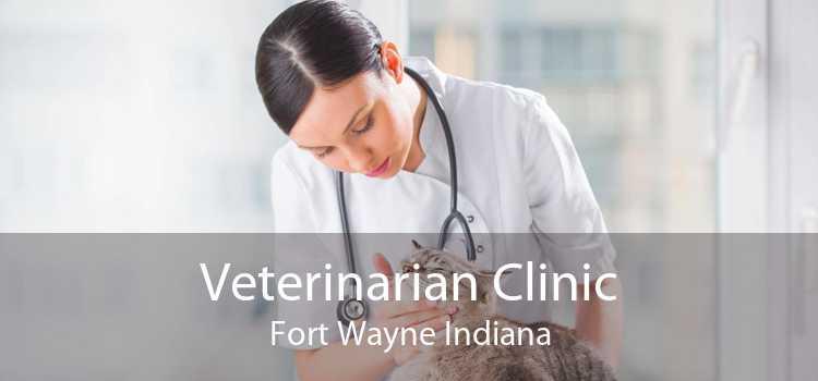 Veterinarian Clinic Fort Wayne Indiana