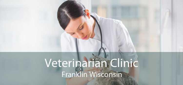 Veterinarian Clinic Franklin Wisconsin