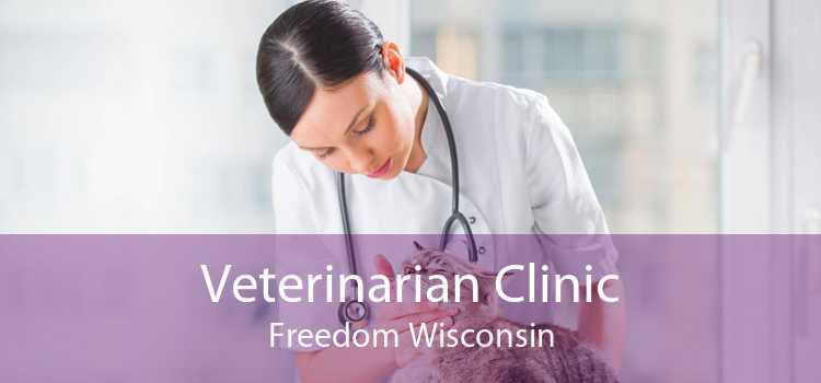 Veterinarian Clinic Freedom Wisconsin