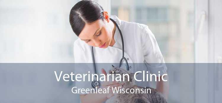 Veterinarian Clinic Greenleaf Wisconsin