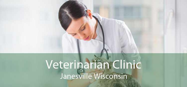 Veterinarian Clinic Janesville Wisconsin