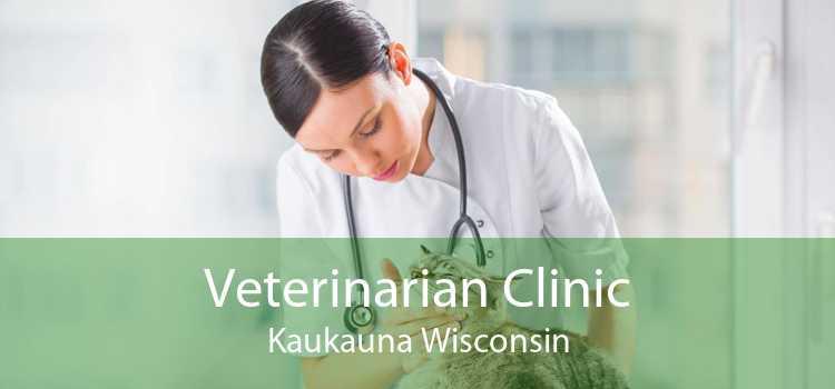 Veterinarian Clinic Kaukauna Wisconsin