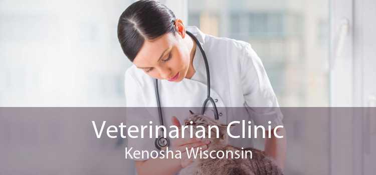 Veterinarian Clinic Kenosha Wisconsin