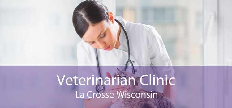 Veterinarian Clinic La Crosse Wisconsin