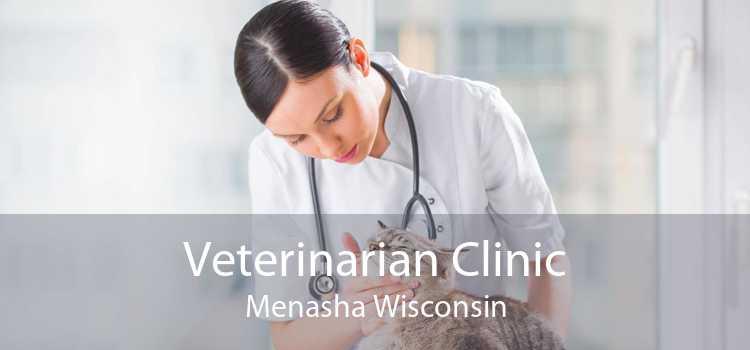 Veterinarian Clinic Menasha Wisconsin