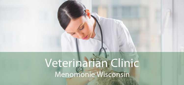 Veterinarian Clinic Menomonie Wisconsin