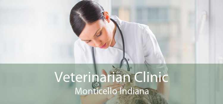 Veterinarian Clinic Monticello Indiana