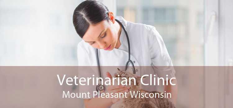 Veterinarian Clinic Mount Pleasant Wisconsin