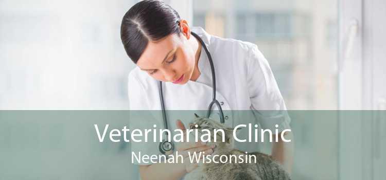 Veterinarian Clinic Neenah Wisconsin