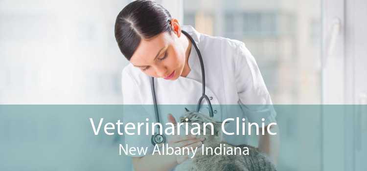 Veterinarian Clinic New Albany Indiana