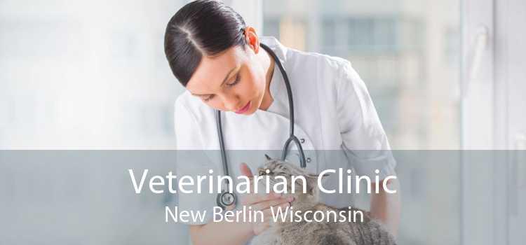 Veterinarian Clinic New Berlin Wisconsin