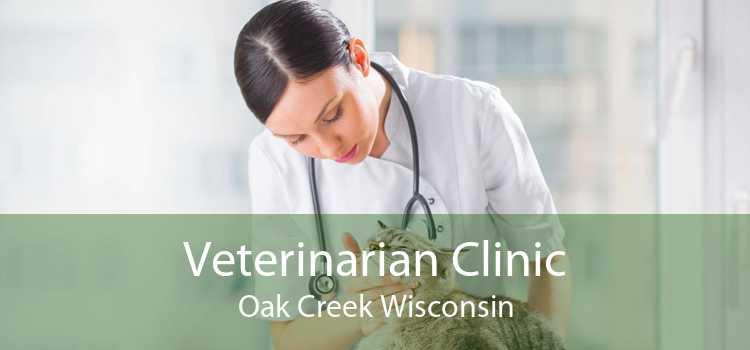 Veterinarian Clinic Oak Creek Wisconsin
