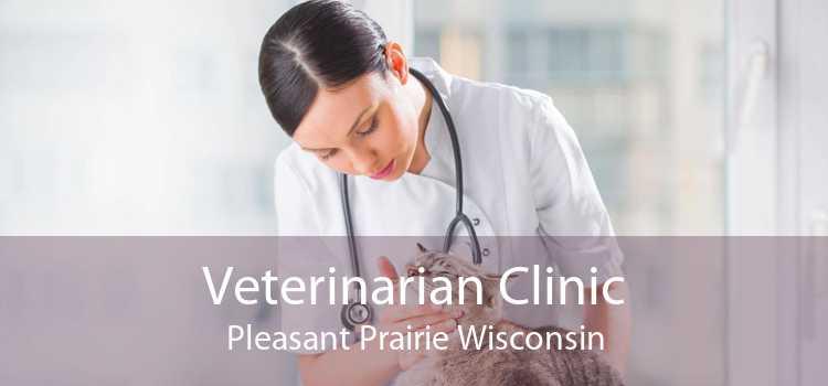 Veterinarian Clinic Pleasant Prairie Wisconsin