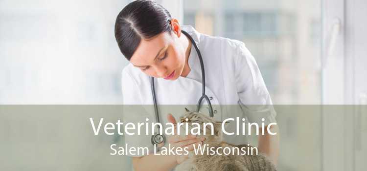 Veterinarian Clinic Salem Lakes Wisconsin