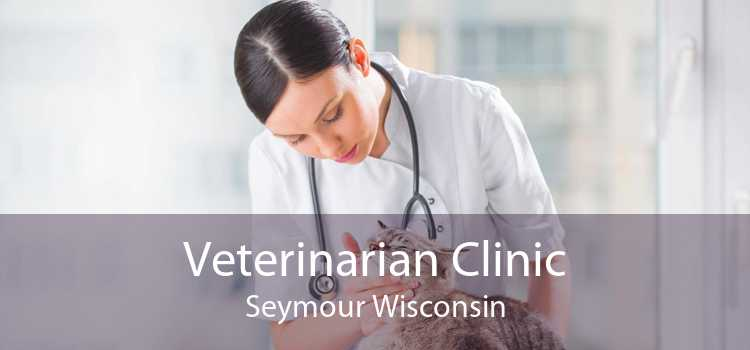 Veterinarian Clinic Seymour Wisconsin