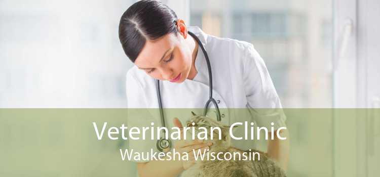 Veterinarian Clinic Waukesha Wisconsin
