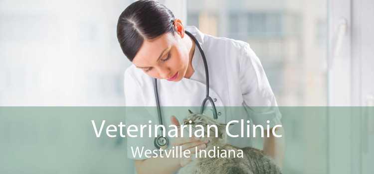 Veterinarian Clinic Westville Indiana