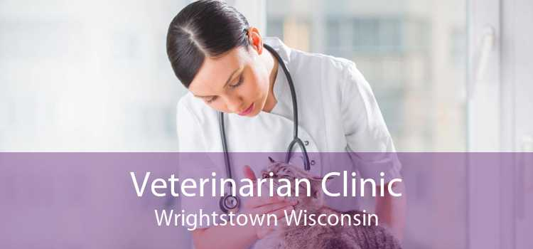 Veterinarian Clinic Wrightstown Wisconsin